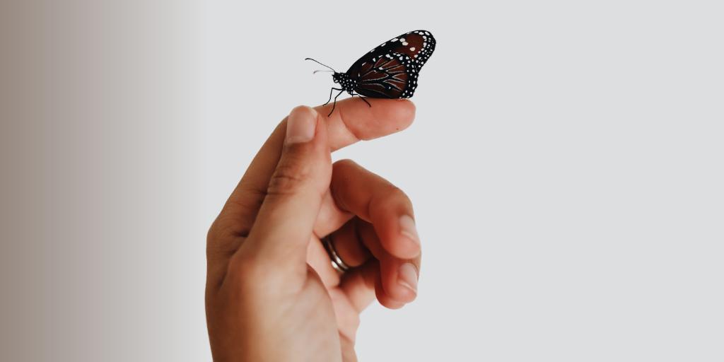 Nurturing a Positive Company Culture with a Remote Team
